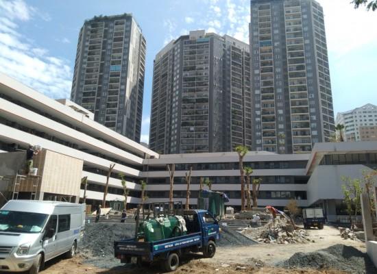 Trường mầm non Hoa Sen - Trung Hòa, Cầu Giấy